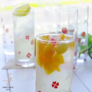 6個セット スパークリング ゾンビタンブラー  ピンクローズ 夏冷グラス タンブラー 360cc ガラス/食器|ricebowl