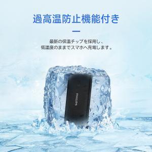 モバイルバッテリー 機内持ち込み可能 大容量 10000mAh 急速充電 薄型 軽量 安心 安全 PSE適合品 Type-C 入力搭載 送料無料 PHILIPS ブランド 正規販売店|richgo-japan|11
