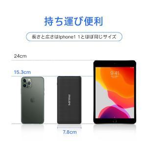 モバイルバッテリー 大容量 10000mAh 急速充電 薄型 軽量 コンパクト 安心 安全 PSE適合品 Type-C 入力搭載 送料無料 PHILIPS ブランド 正規販売店 richgo-japan 09