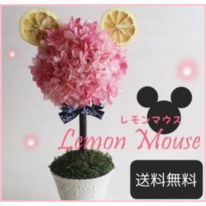 【送料無料】ぎっしりお花が入った母の日のプリザーブドフラワートピアリー|レモンマウス【プリザード】|richild