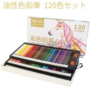 油性色鉛筆 120色セット 鉛筆 筆記具 文房具 文具 ぬり絵 子供/大人の塗り絵用、文具、お絵描き...