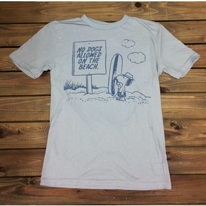 ジャンクフード スヌーピー サーフボード Tシャツ スモークグレー JUNKFOOD PEANUTS メンズ レディース|richsmile