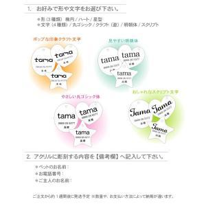 ペット用迷子札 ドッグタグ アクリル3種類 愛犬愛猫ペット名いれ|ricordo|02