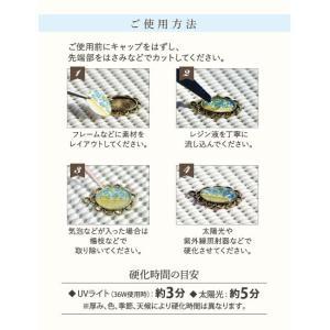 UVレジン クラフトアレンジ 65g (クリア) riena-shop 02