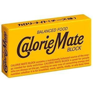 大塚製薬 カロリーメイト ブロックチーズ 2本×60個|riftencom