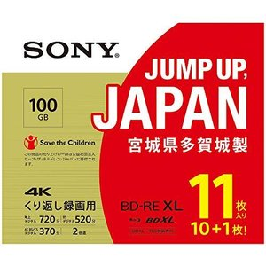 ソニーSONY ビデオ用ブルーレイディスク (11枚パック)11BNE3VZPS2 (BE-RE 3層 2倍速 100GB)|riftencom