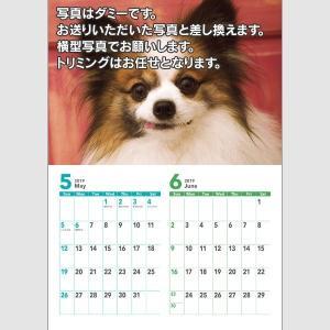 犬好きのためのオリジナルカレンダー(写真6点入り)A4サイズ|rig4