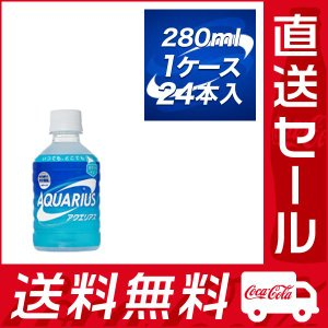 アクエリアス 280ml PET×24本入 ★コカ・コーラ社製品 直送セール rikaryo