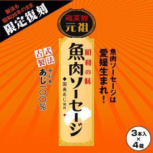 元祖 魚肉ソーセージ 75g×3本入×4箱=計12本 愛媛 西南開発|rikaryo