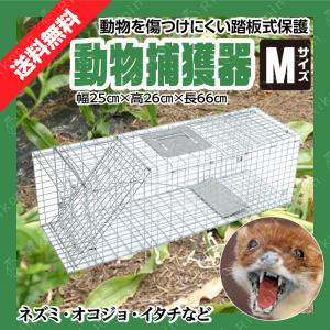 捕獲器 猫 アニマルトラップ Mサイズ 79cm×30cm×29cmトラップ 箱罠 イタチ 駆除 捕...