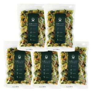 九州ドライベジ 乾燥野菜 九州産 野菜&わかめ ミックス 100g 5袋入り