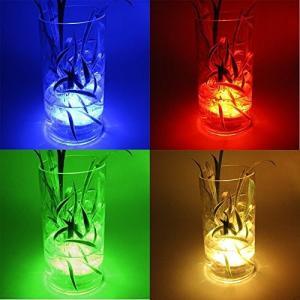 防水16色潜水ライト イルミネーション 水中照明 電池式RGB LEDライト リモコン付き 花瓶 金魚鉢 水槽 ハロウィン 誕生日会やパーティーなどの|rinco-shop