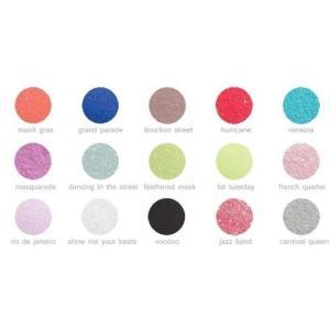 EzFlow ブギーナイツDX カーニバル カラーパウダーコレクションキット アクリル材|rinco-shop