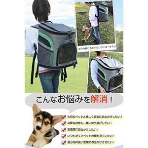 ペット キャリーバッグ リュック 犬 猫 キャリー キャリーリュック 小型犬 いぬ ねこ (Mサイズ、 グレー&グリーン)|rinco-shop