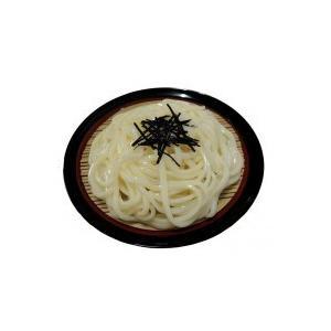 日本職人が作る  食品サンプル ざるうどん IP-432|rindr