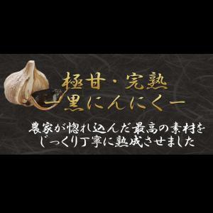 グリーンパパイヤファームが惚れ込んだ、高級熟成・極甘!黒ニンニク100g(青森産)※約20日分|rindr