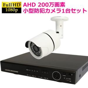 防犯カメラ セット 家庭用 屋外 屋内 高画質200万画素 赤外線付き 夜間録画可能 小型カメラ 1台セット HDD1TB付属|ring-g