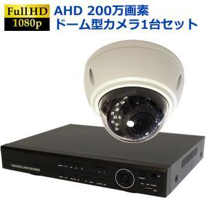 防犯カメラ セット ドームカメラ 屋外 屋内 高画質200万画素 赤外線付き 夜間録画可能 1台セット HDD1TB付属|ring-g