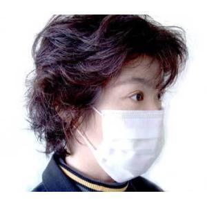 プロレーンマスク50枚セット 鳥 豚 インフルエンザ マスク 花粉症 プロレーン 50枚セット MERS マーズ コロナウイルス
