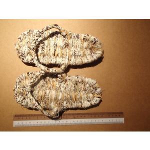 わら草履 / わらじ ワラジ 草鞋 藁草履 わらぞうり わらサンダル スリッパ サイズ:約23cm 手作り品の為、サイズはおおよそとなります。|rippa-koppa|05