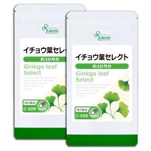 イチョウ葉セレクト 約3か月分×2袋 C-509-2 送料無料 サプリ サプリメント