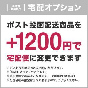 (北海道・離島専用)配送方法を宅配便に変更|rirty