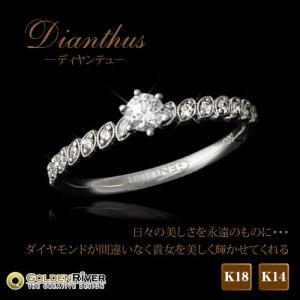 ダイヤモンドリング 天然ダイヤモンド0.13ct エタニティリング K18 Dianthusディヤンテュ|risacrystal