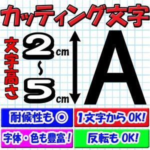 カッティング文字 2〜5cm 1文字から買える カッティングシール ホームページアドレス チームステッカー 表札等に【クーポン配布中】 rise-corporation-jp