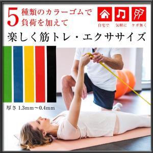 強度の違う5種類のトレーニングチューブ  エクササイズ 強度が違うカラフルなゴムバンド 袋付き 持ち...