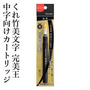 筆ペン 呉竹 くれ竹美文字 完美王 中字向けカートリッジ|rissei