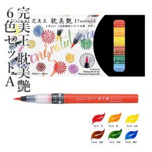 筆ペン 呉竹 完美王 耽美艶 6色セットA|rissei