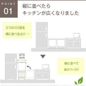 ゴミ箱 キッチン 45L フ縦型 蓋付き フタ キャスター付 スリム 2段 分別 2分類 隙間|risu-onlineshop|02