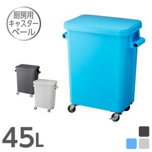 厨房用キャスターペール45L ゴミ箱 キッチン 分別|risu-onlineshop