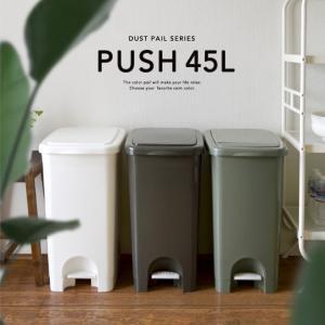 プッシュペタルペール45L  サイズ:横315×奥行465×高さ582(mm) 材質:本体・フタ/P...