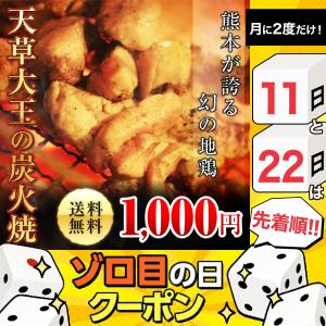 本日割引クーポン有 おつまみ 熊本名物 焼き鳥 鶏の炭火焼 天草大王 約100g 地鶏 まとめ買いクーポン 1000円ぽっきり