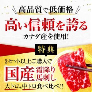 馬刺し 熊本 お中元 国産 2セット購入で100gオマケ増量 赤身 200g 約4人前 馬肉 馬刺 送料無料 ギフト 肉 食べ物 おつまみ|ritafoods-basasi|04