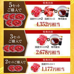 馬刺し 熊本 お中元 国産 2セット購入で100gオマケ増量 赤身 200g 約4人前 馬肉 馬刺 送料無料 ギフト 肉 食べ物 おつまみ|ritafoods-basasi|05