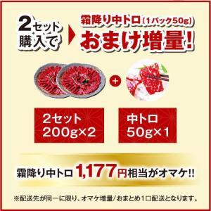 馬刺し 熊本 お中元 国産 2セット購入で100gオマケ増量 赤身 200g 約4人前 馬肉 馬刺 送料無料 ギフト 肉 食べ物 おつまみ|ritafoods-basasi|10