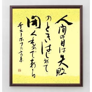 アントン・チェーホフの名言書道色紙『人間の目は失敗の時、はじめて開くものである』額付き/直筆済み|rittermind