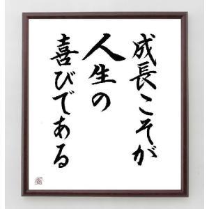 名言色紙『成長こそが人生の喜びである』額付き/直筆済み|rittermind