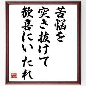 ベートーヴェンの名言色紙『苦悩を突き抜けて歓喜にいたれ』額付き/受注後直筆|rittermind