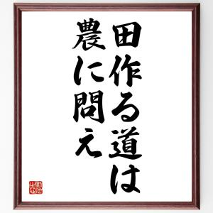名言色紙『田作る道は農に問え』額付き/受注後直筆