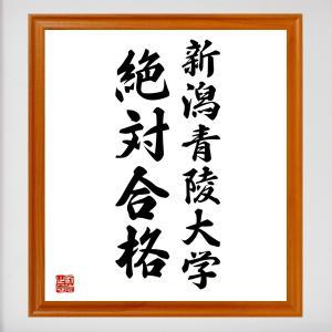 合格祈願色紙『新潟青陵大学、絶対合格(新潟県)』額付き/受注後直筆 rittermind