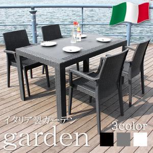 ガーデンセット ガーデン 5点セット テーブル セット チェアー 肘付き ラタン調 riverp