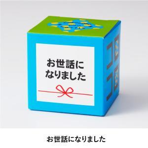 プチギフト 結婚式 スイーツ メッセージコロコ...の詳細画像3
