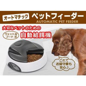 ペットフィーダー 4食分 ストーンホワイト 水入れ付 タイマー 音声録音|rmjapan