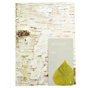 ウッドペッカーノート WOODPECKER NOTE  White birch M|rocca-clann