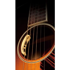 L.R.Baggs Anthem Acoustic Guitar Pickup + Micropho...