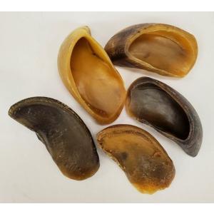 レッドバーン 牛のヒヅメ  ナチュラル  75個入【送料無料】|rocky