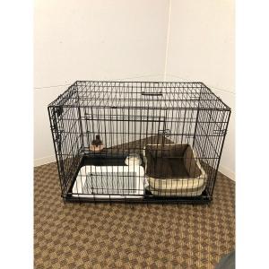 小型犬に必要なアイテムが5点セットに!人気商品が1度に揃う★スターターセット ブラウン